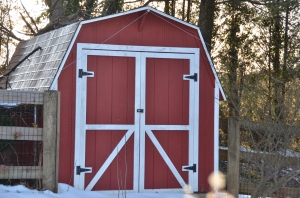 Shed for Chicken Coop