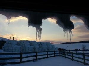 Ice Hanging